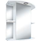 Шкаф-зеркало Мадрид 500 со светильником 3D Белые Цветы Iris