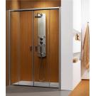 Душевая дверь Radaway Premium Plus DWD 140