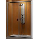 Душевая дверь Premium Plus DWD 180